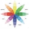 Психология влияния цвета на конверсию сайта