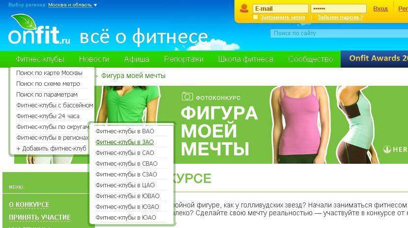 пример выпадающего меню сайта