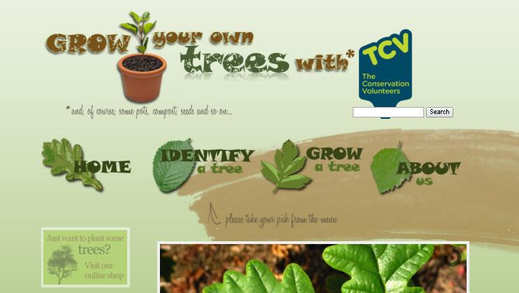 Зеленый и коричневый: интересные сочетания цветов в дизайне сайта