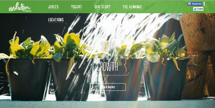 Зеленый цвет в дизайне сайта - символ весны, роста, плодородия