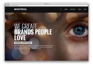 шаблоны портфолио: современная интерактивная wordpress тема 2013