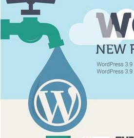 wordpress новые возможности для web-разработчика