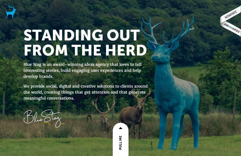Необычная реалистичность и креативная айдентика: актуальные тренды веб-дизайна в 2016 году