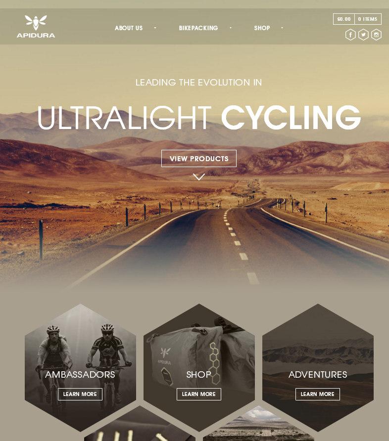 Эффектно оформленная домашняя страница продающего сайта – пример великолепного дизайна