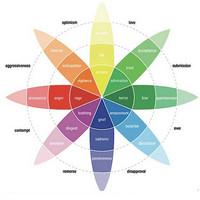 Влияние восприятия цвета на конверсию сайта