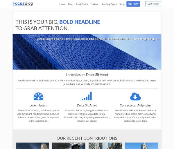 FocusBlog — самая продаваемая многоцелевая тема WordPress, оптимизирована для получения высоких доходов от рекламы AdSense
