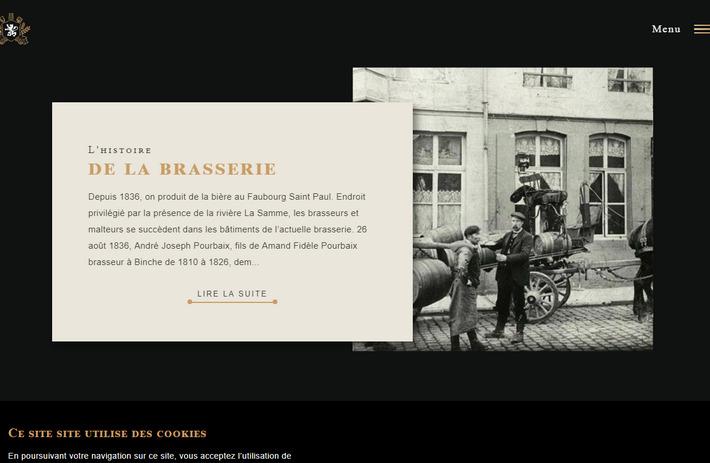Трендовый дизайн веб-сайта, продающего брендовые сорта пива