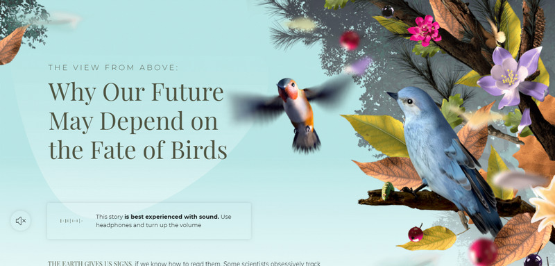 Motion Design - animated 3D graphics from nytimes.com